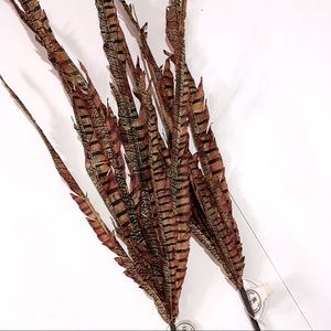 2 pc. Pheasant Feather Picks